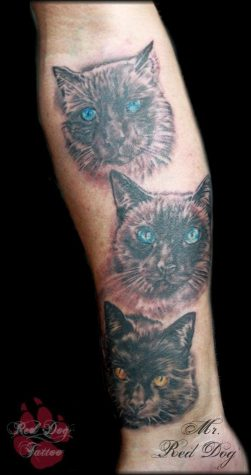cat tattoo 501x950 00001636 251x475 - cat-tattoo_501x950_00001636