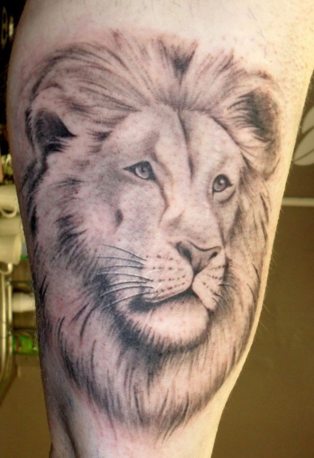 lion tattoo 651x950 00009244 617x900 - Lion tattoo