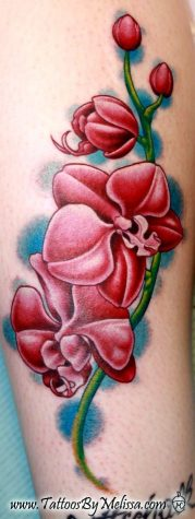 orchid tattoo 357x950 00011842 179x475 - orchid-tattoo_357x950_00011842