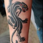panther tattoo 648x950 00011933 150x150 - tribal-flower-tattoo_640x960_00019032