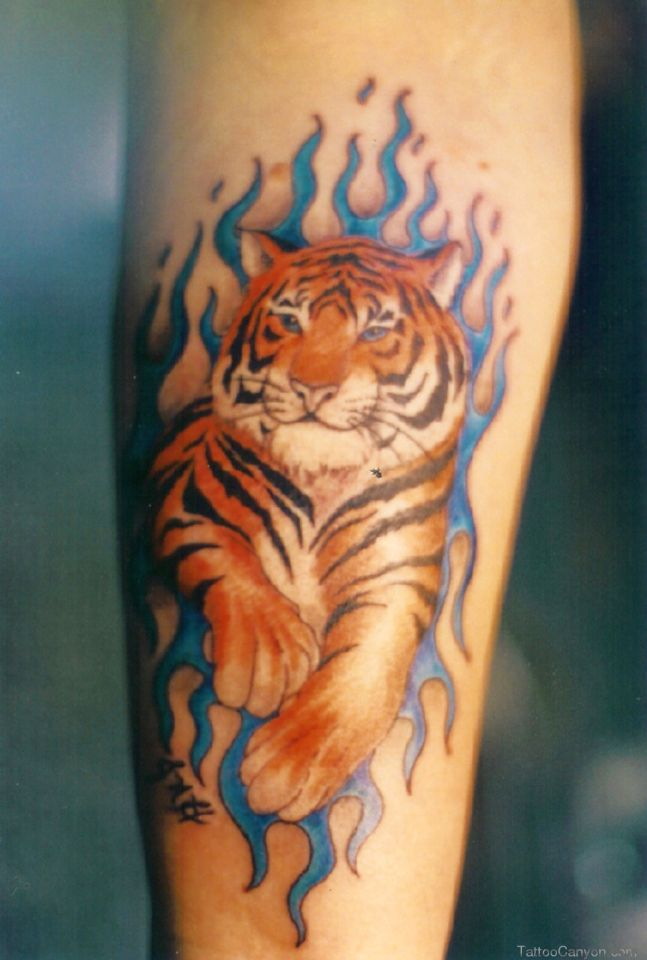 tiger tattoo designs 647x960 00015187 - tiger-tattoo-designs_647x960_00015187