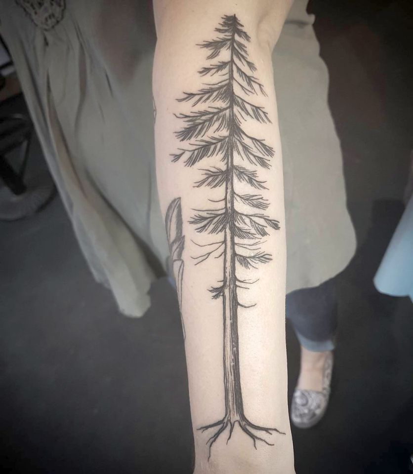 tree tattoos 836x960 00016476 - tree-tattoos_836x960_00016476