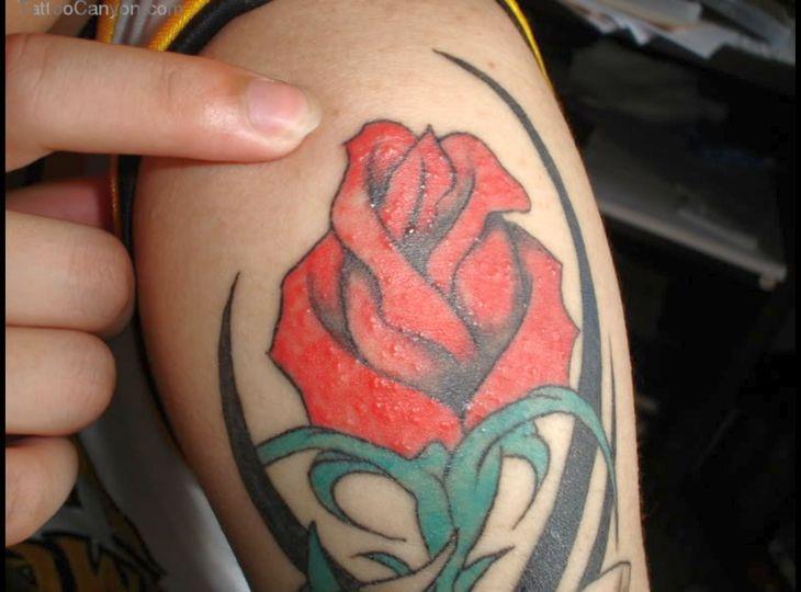 tribal butterfly tattoos 730x540 00017748 - tribal-butterfly-tattoos_730x540_00017748