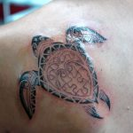 turtle tattoos 960x638 00022589 150x150 - nautical-star-tattoo_713x950_00011789