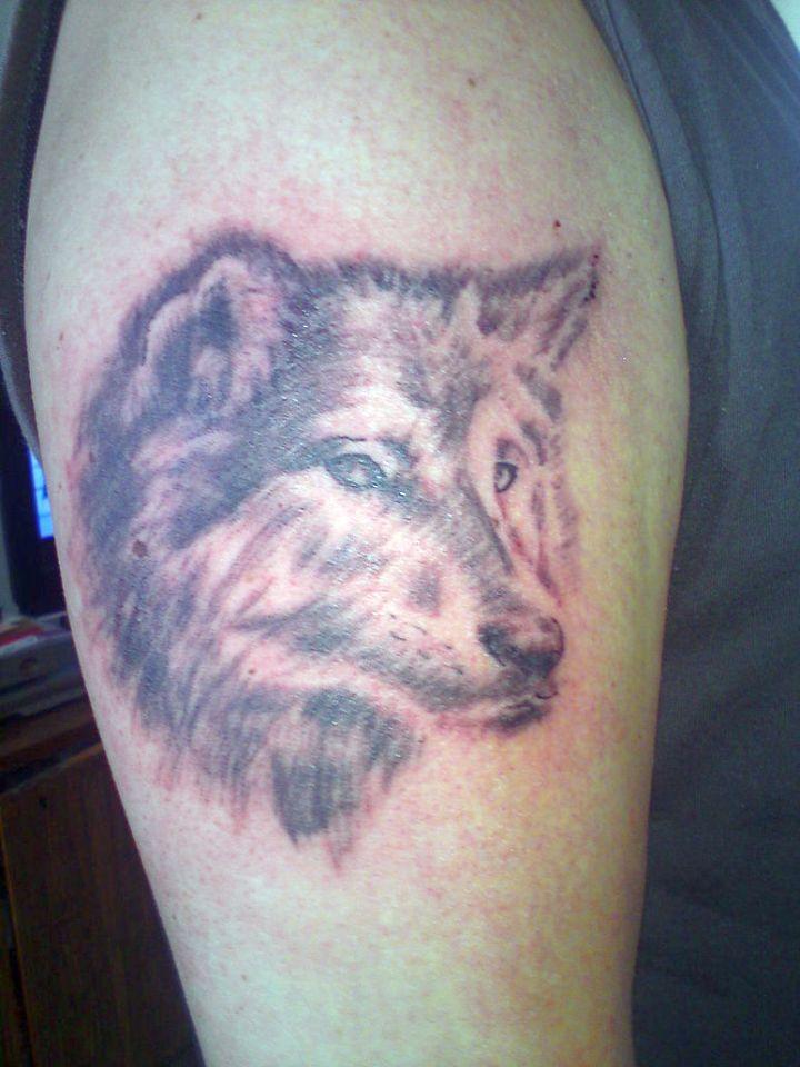 wolf tattoo designs 720x960 00026920 - wolf-tattoo-designs_720x960_00026920